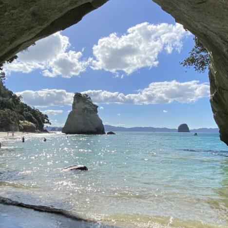 ニュージーランド北島コロマンドル観光